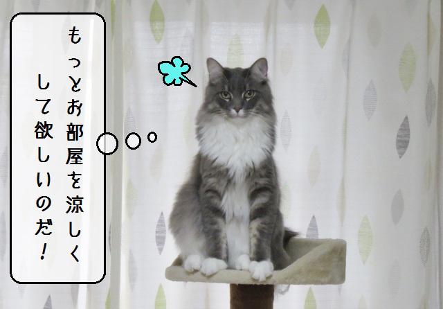 f:id:suzumesuzume:20190909185926j:plain