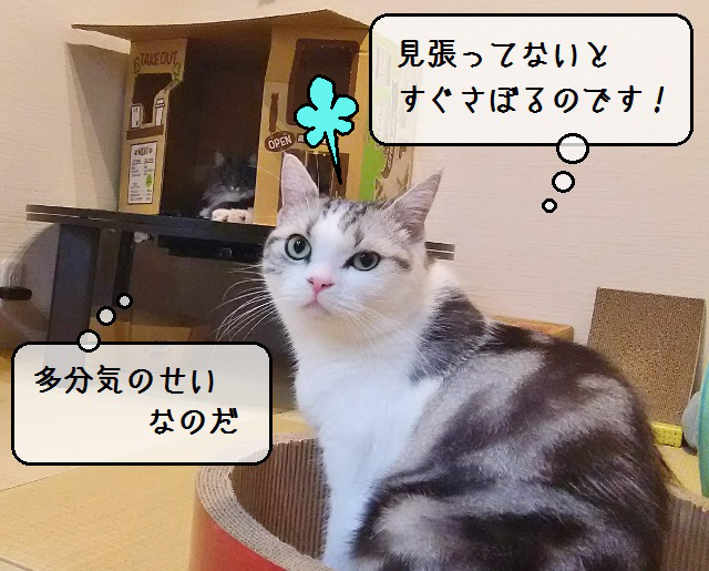 f:id:suzumesuzume:20191127200717j:plain