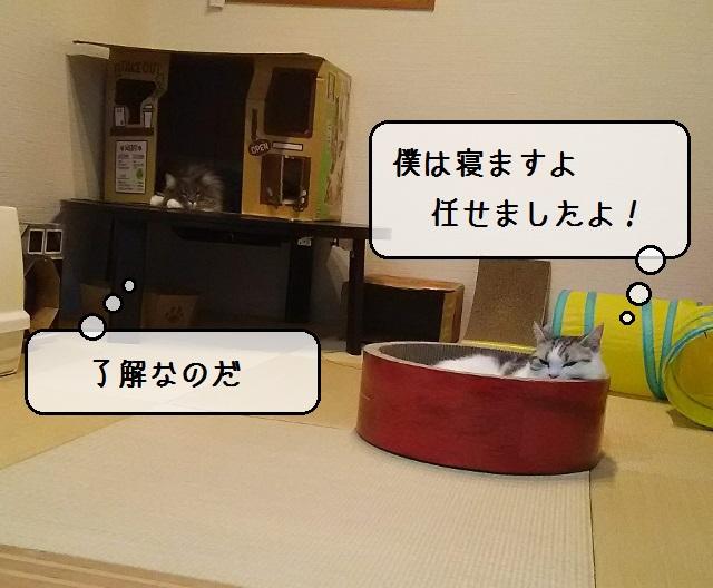 f:id:suzumesuzume:20191127200721j:plain