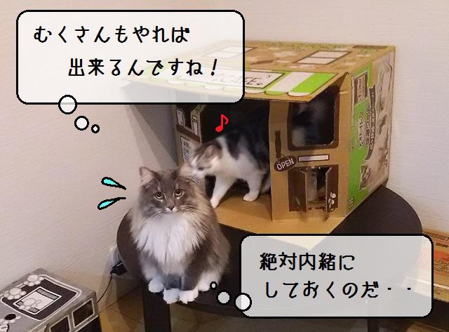 f:id:suzumesuzume:20191127200812j:plain