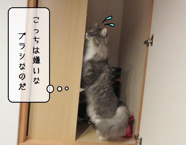 f:id:suzumesuzume:20191202190259j:plain