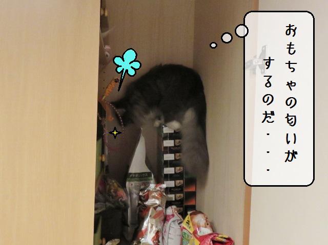 f:id:suzumesuzume:20191202190340j:plain