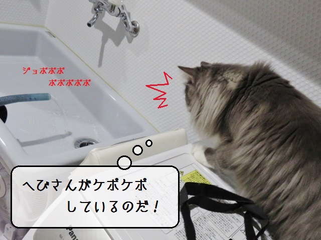 f:id:suzumesuzume:20191204155409j:plain