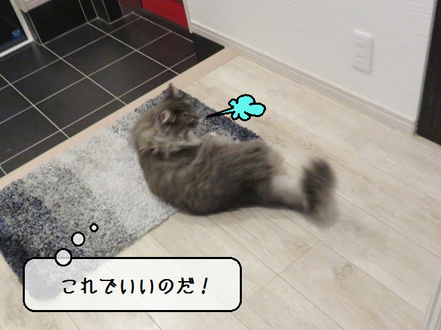 f:id:suzumesuzume:20191211160347j:plain