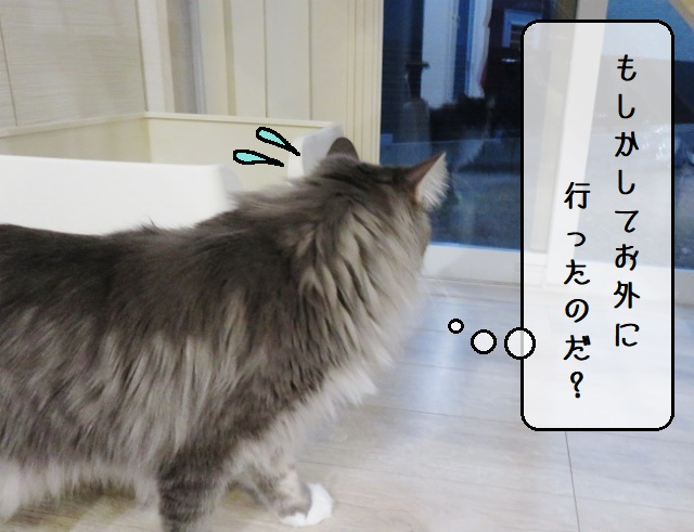 f:id:suzumesuzume:20191217154825j:plain