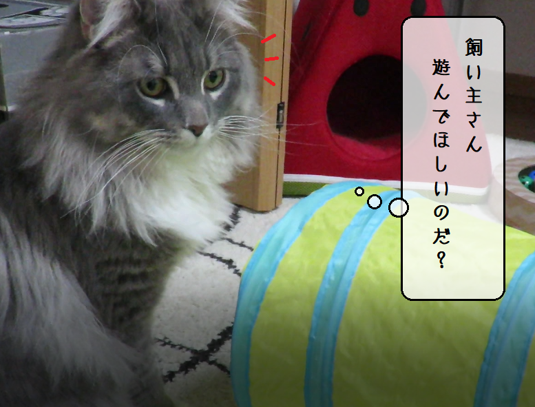 f:id:suzumesuzume:20191218200816p:plain
