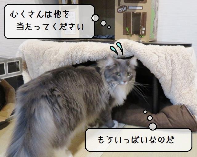 f:id:suzumesuzume:20191223161755j:plain