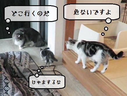 f:id:suzumesuzume:20210112201935p:plain