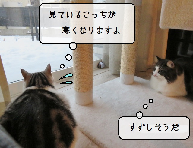 f:id:suzumesuzume:20210216142007j:plain