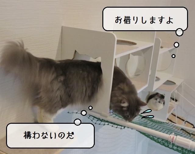 f:id:suzumesuzume:20210406142029j:plain