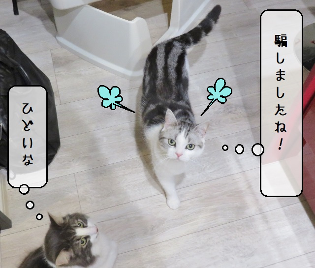 f:id:suzumesuzume:20210413200157j:plain