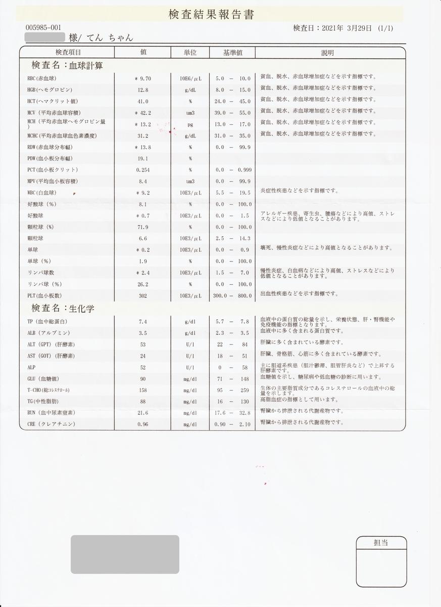 f:id:suzumesuzume:20210420202533j:plain