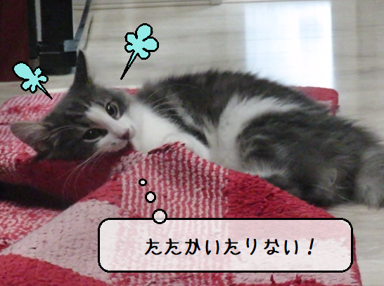 f:id:suzumesuzume:20210421142201p:plain