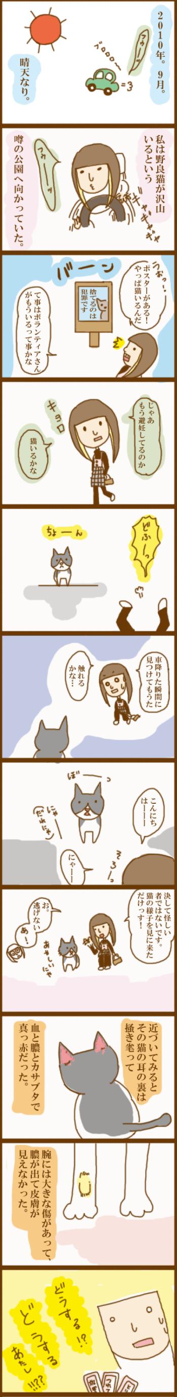 f:id:suzuokayu:20201011195021j:plain