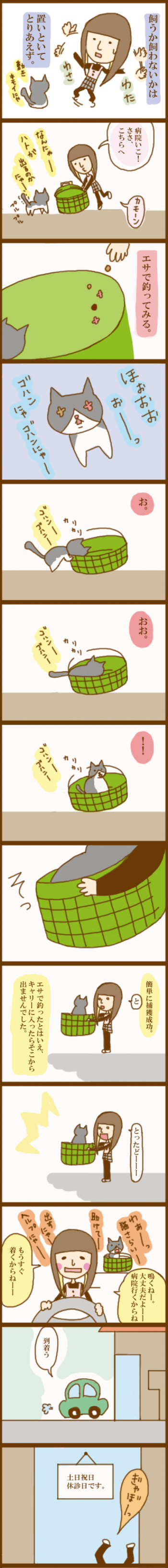 f:id:suzuokayu:20201011195146j:plain