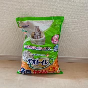 f:id:suzuokayu:20201017200459j:plain