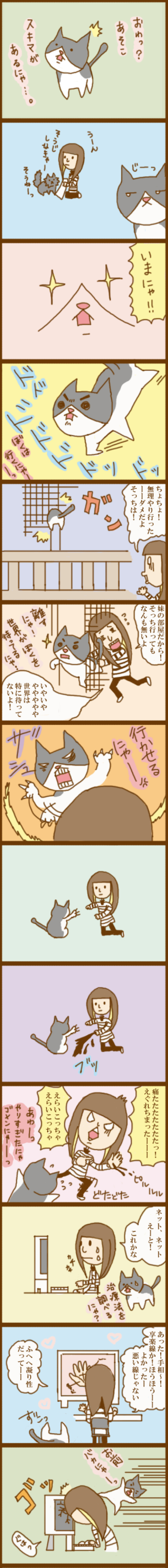 f:id:suzuokayu:20201017212614j:plain