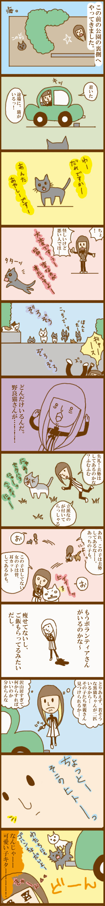 f:id:suzuokayu:20201017224746j:plain
