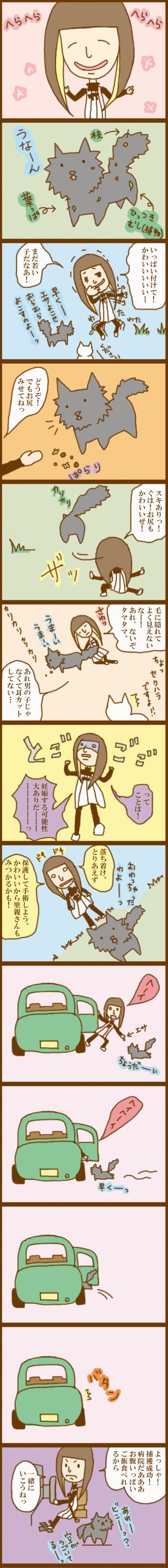 f:id:suzuokayu:20201017225005j:plain
