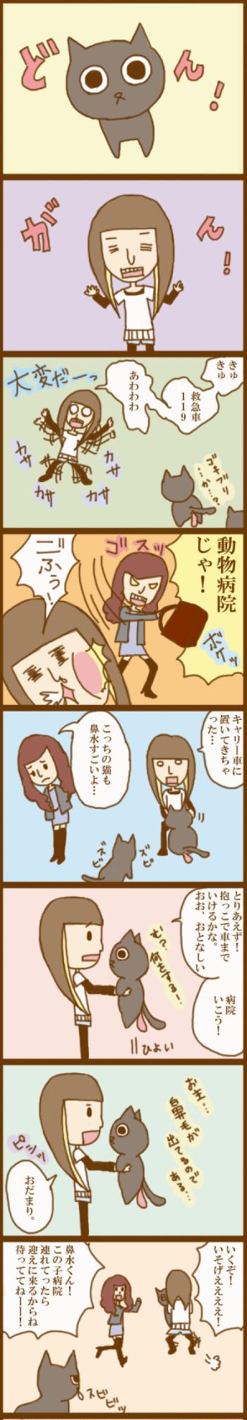 f:id:suzuokayu:20201030091647j:plain