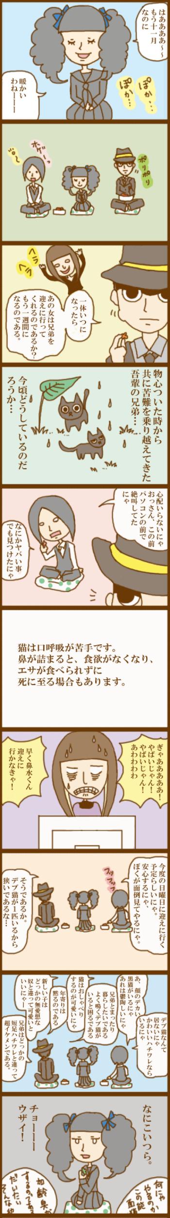 f:id:suzuokayu:20201101162008j:plain