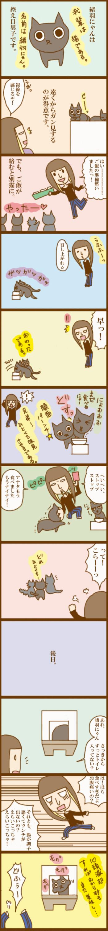 f:id:suzuokayu:20201105085950j:plain