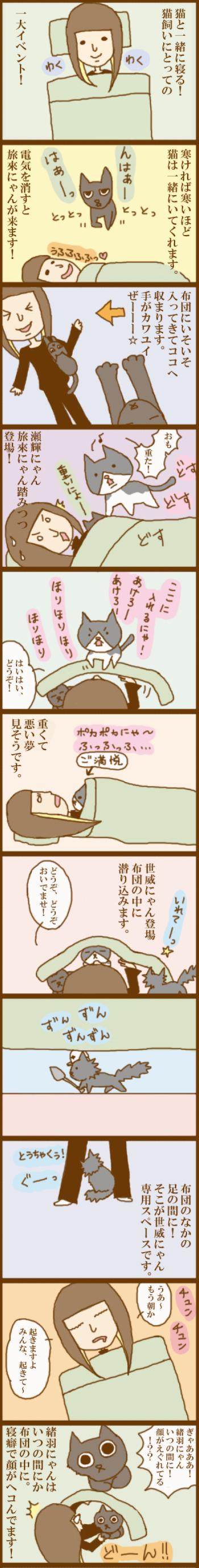 f:id:suzuokayu:20201114174803j:plain