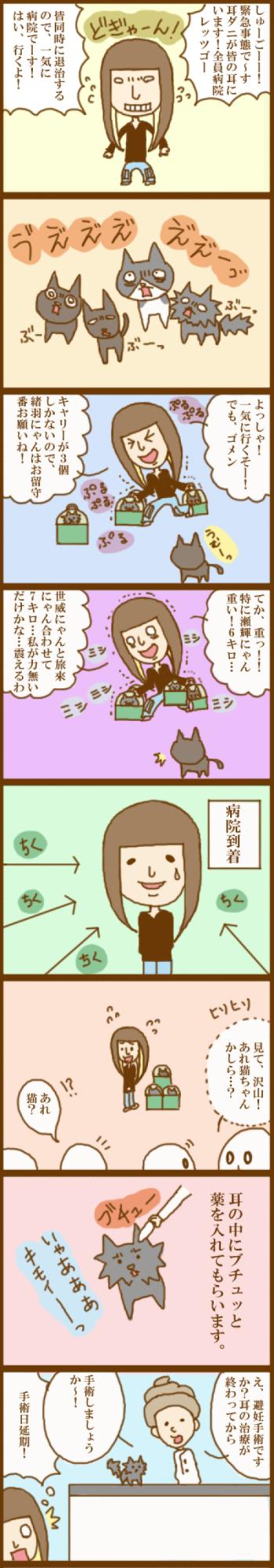 f:id:suzuokayu:20201115185747j:plain