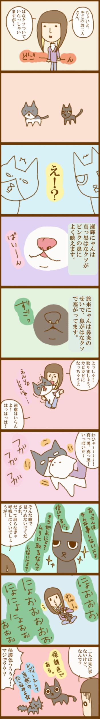 f:id:suzuokayu:20201115190346j:plain