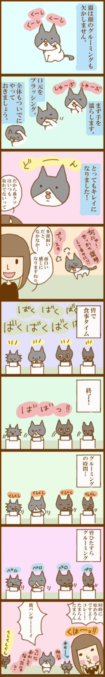 f:id:suzuokayu:20201115190447j:plain