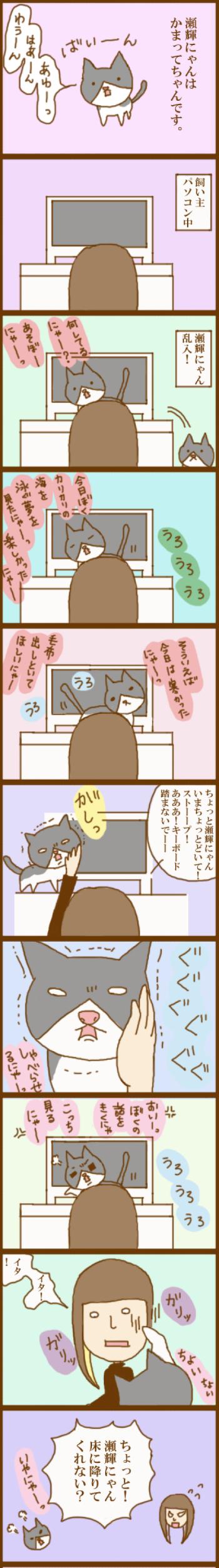 f:id:suzuokayu:20201115190536j:plain