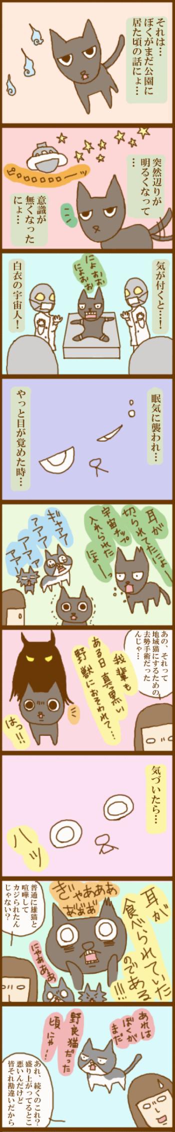 f:id:suzuokayu:20201116111524j:plain