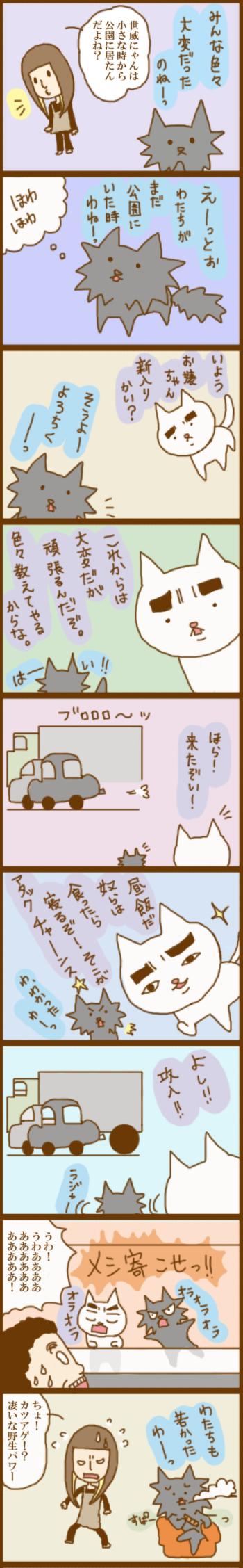 f:id:suzuokayu:20201116112041j:plain