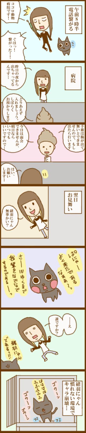 f:id:suzuokayu:20201117092233j:plain