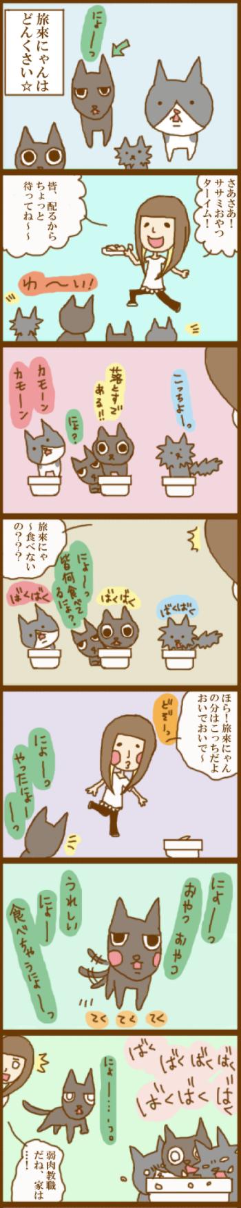 f:id:suzuokayu:20201118104452j:plain