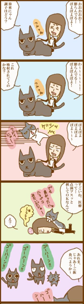f:id:suzuokayu:20201119101801j:plain