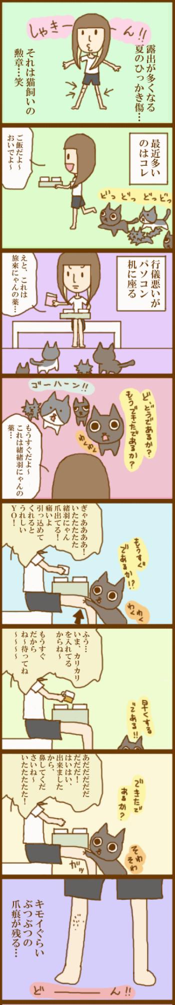 f:id:suzuokayu:20201119104515j:plain