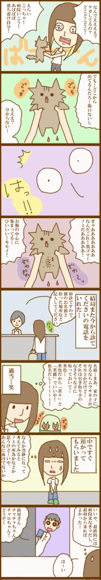 f:id:suzuokayu:20201120115751j:plain