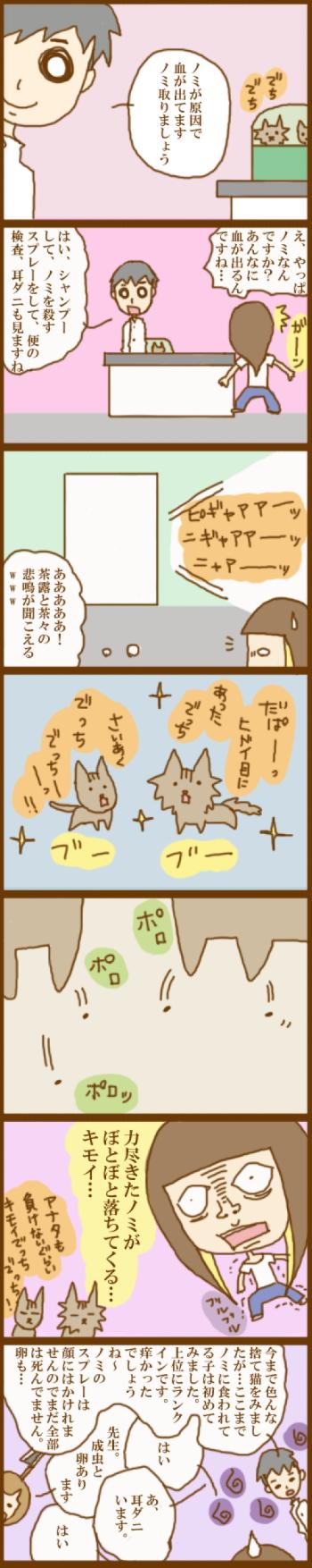 f:id:suzuokayu:20201120115955j:plain