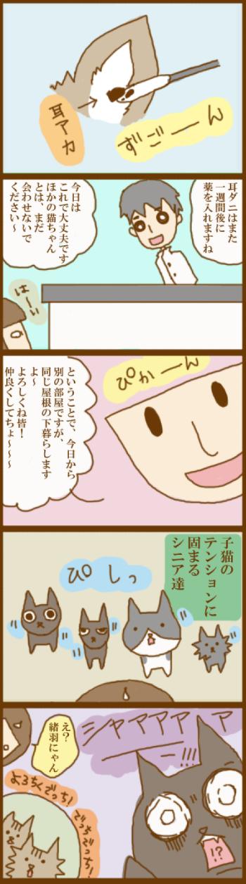 f:id:suzuokayu:20201120120115j:plain