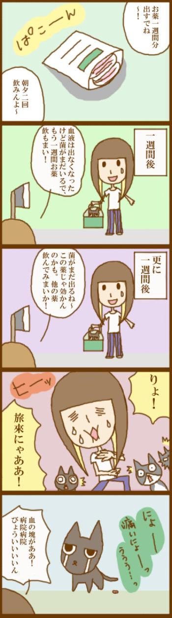 f:id:suzuokayu:20201123101421j:plain