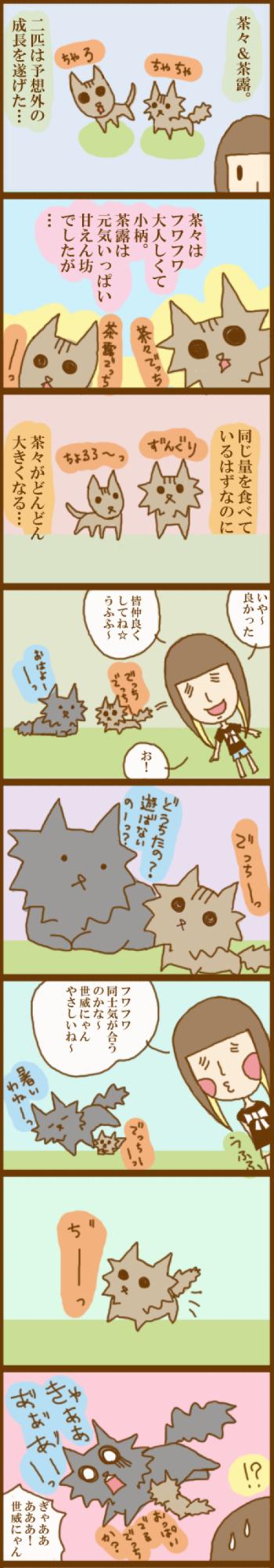 f:id:suzuokayu:20201123102023j:plain