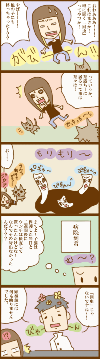 f:id:suzuokayu:20201124100704j:plain
