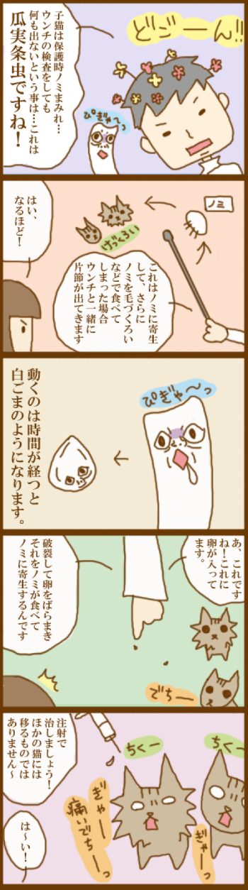 f:id:suzuokayu:20201124100800j:plain