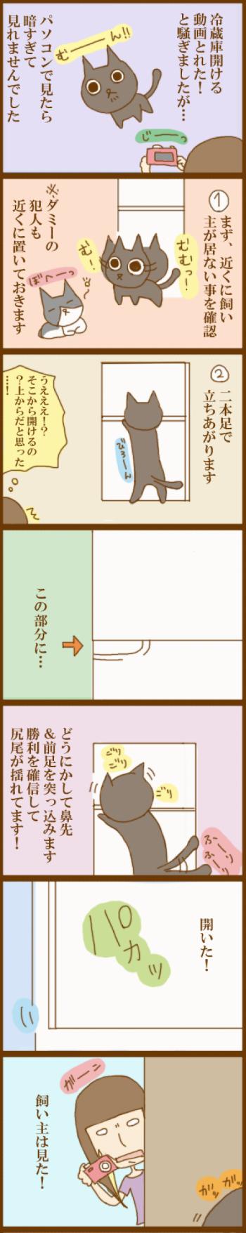 f:id:suzuokayu:20201125102617j:plain