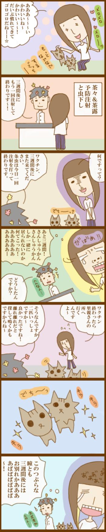 f:id:suzuokayu:20201125103249j:plain