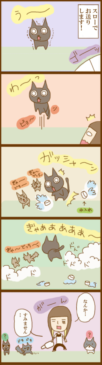 f:id:suzuokayu:20201125105451j:plain