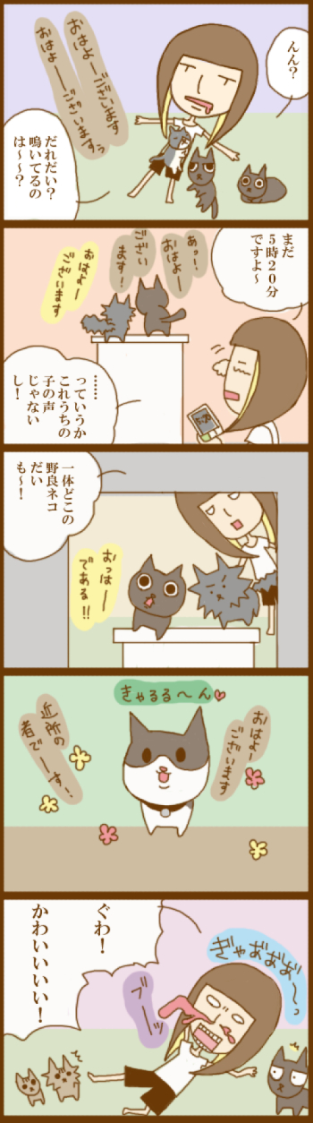 f:id:suzuokayu:20201126095907j:plain