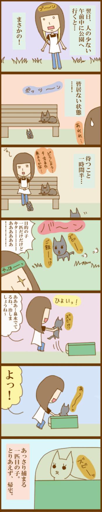 f:id:suzuokayu:20201127094654j:plain