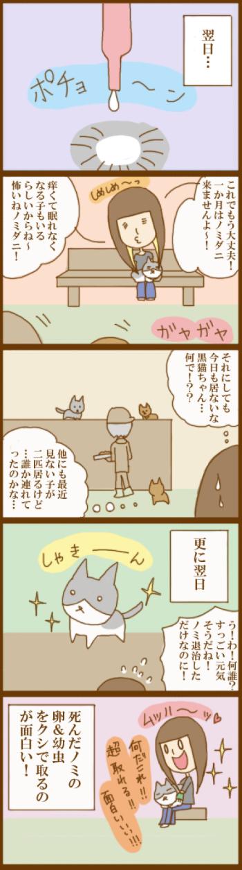 f:id:suzuokayu:20201129194350j:plain